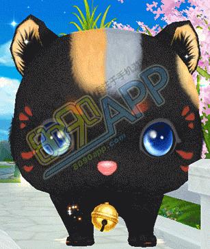 qq炫舞黑色猫咪老师坐骑怎么得 猫の印和喵喵礼盒如何获取图片