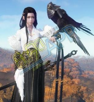 天涯明月刀圣绣・白凤
